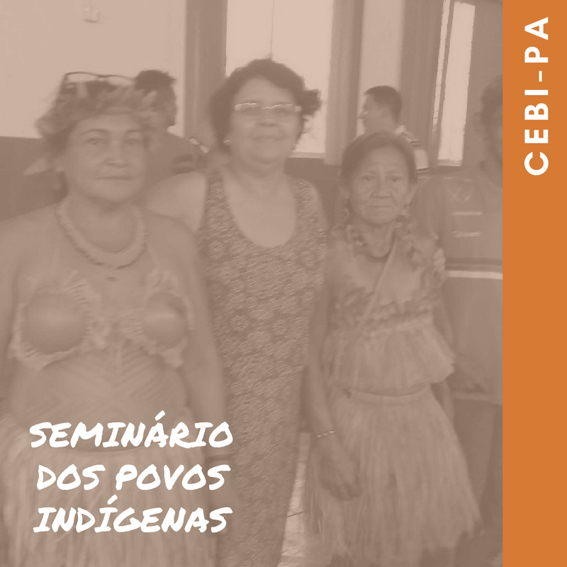 CEBI-PA Em sintonia e apoio aos povos indígenas do Baixo Tapajós e Arapiuns