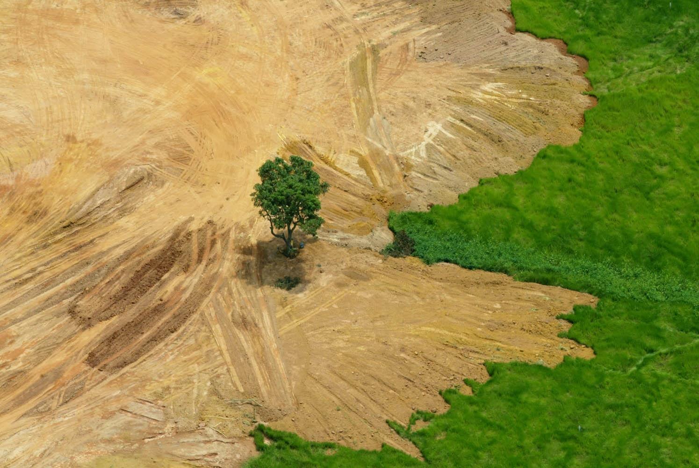 Constrangimento amazônico