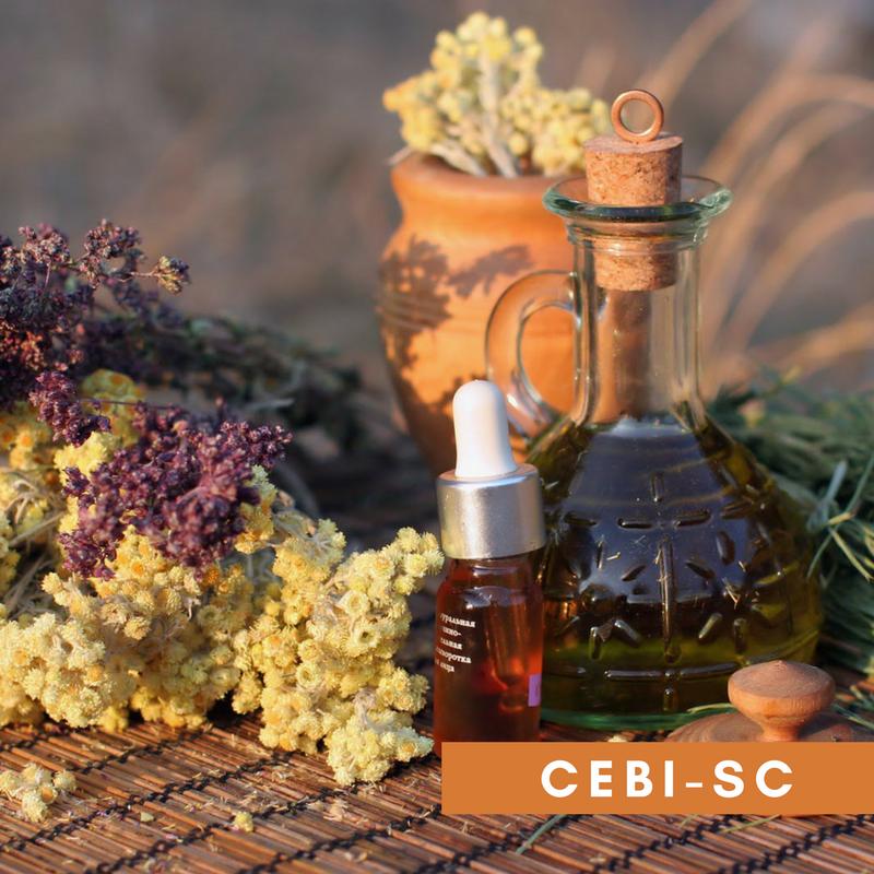 CEBI-SC: Educação popular em saúde