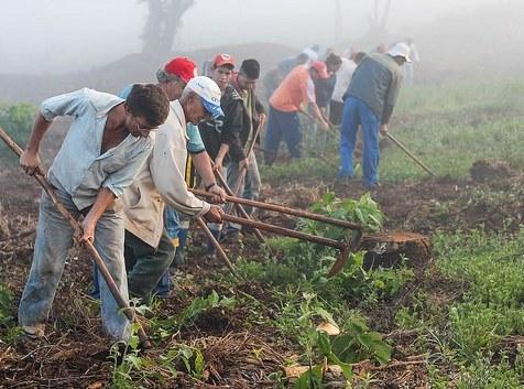 Agricultores presos por ordem de Sérgio Moro são inocentados
