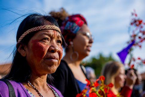 MS: O golpe atinge os Guarani Kaiowá e Terena