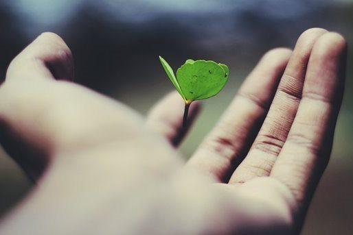 Meditação do evangelho: Conhecendo os sinais de Deus