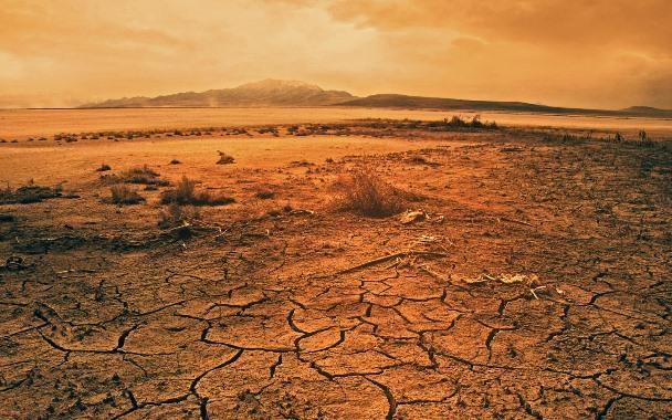 Reflexão do Evangelho: A boa-nova do Reino é testada no deserto e anunciada publicamente