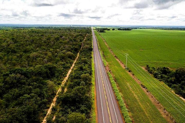 Concentração de renda, desmatamento e esgotamento dos recursos naturais: o retrato do agronegócio no Cerrado