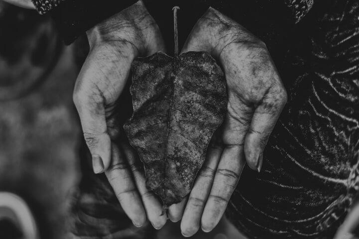 """Reflexão da semana: """"Ninguém as arrebatará da minha mão"""" (João 10,27-30)"""