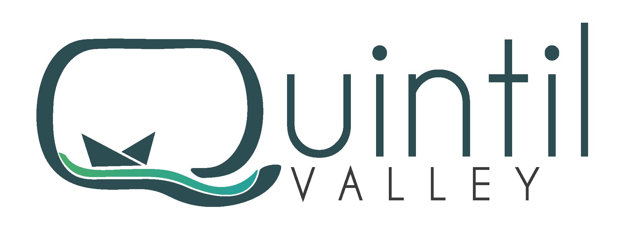 Quintil valley logo