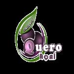 Quero Açaí Delivery de Serra dos Aimorés - aplicativo e site de delivery criado pela cliente fiel