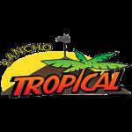 Tropical Lanches e Restaurante de São Carlos - aplicativo e site de delivery criado pela cliente fiel