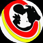 Crush - Revoluxe Qualidade em Carnes de Camaçari - aplicativo e site de delivery criado pela cliente fiel