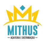 MITHUS AÇAITERIA de Iporá - aplicativo e site de delivery criado pela cliente fiel