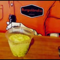 Burgonese Burgolândia Burgers