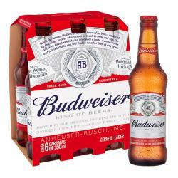 Estupidas Cervejas Delivery web app Budweiser 330ml long neck (6 garrafas)