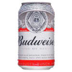 Cerveja Budweiser 350ML  Raroo's Burguer