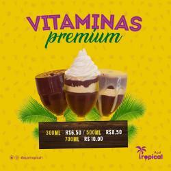 Vitamina Premium 300 ml Açaí Tropical
