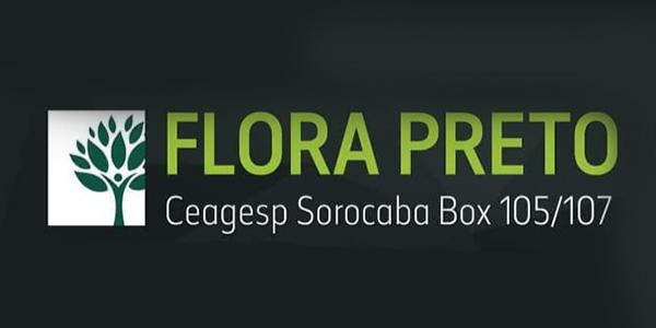 Flora Preto Rodrigues