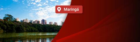 NET Telefone em Maringá