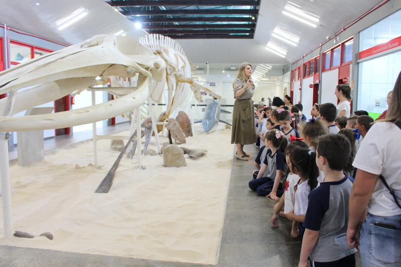 Museu de Zoologia da Unesc promove atividade especial alusiva ao Dia das Crianças