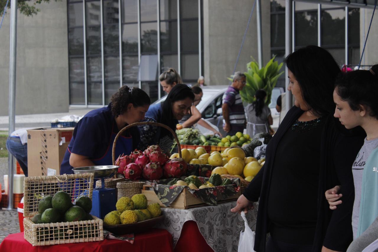 Feira da Agricultura Familiar: edição junina será nesta quinta-feira