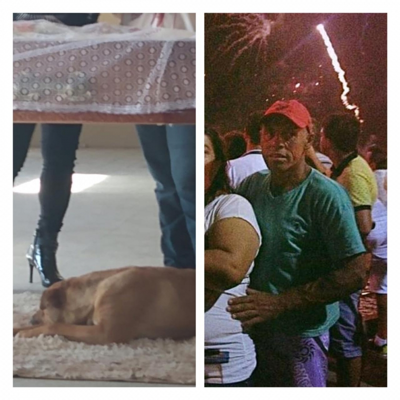 Cachorrinha Nina se despede do amigo em velório e cena viraliza