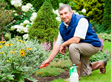 Curso Profissionalizante Online de Jardineiro