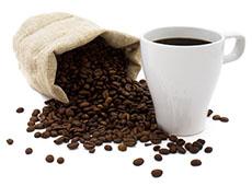 Curso Online Café - Cultivo Superadensado