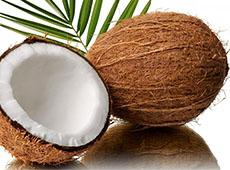 Curso Online Industrialização do Coco - Processo Artesanal