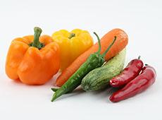 Curso Online Como Montar e Operar uma Pequena Fábrica de Vegetais Desidratados