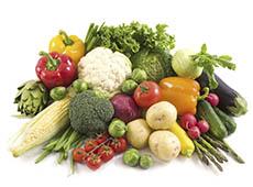 Curso Online Cultivo Orgânico de Hortaliças - Sistema de Produção