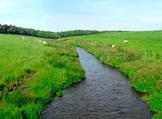 Curso Online Tratamento de Água no Meio Rural
