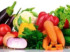 Curso Online Cultivo Orgânico de Tomate, Pimentão, Abóbora e Pepino