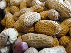 Curso Online Produção de Amendoim de Qualidade