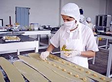 Curso Online Como Montar uma Pequena Fábrica de Alimentos Congelados