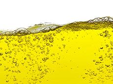 Curso Online Produção de Biodiesel na Fazenda
