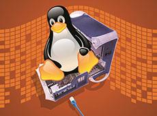 Curso Online Como Montar um Servidor Linux com Terminais Leves