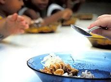 Curso Online Capacitação para Cozinheira - Merendeira Escolar - Boas Práticas de Manipulação de Alimentos