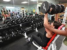 Curso Online Musculação para Academia - Membros Superiores, Inferiores, Abdominal e Glúteo