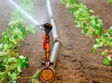 Curso Online Projeto de Irrigação Localizada