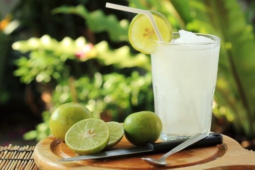 Vitamina de Polpa Limão 400ML