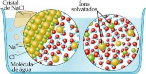 Os íons de sal são atraídos pelas moléculas de água, separam-se e misturam-se com elas. Forma-se uma solução de sal (soluto) e água (solvente).