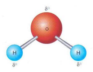 Estrutura molecular da água.