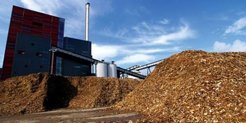 A Biomassa é uma possível solução para o futuro, inclusive no tratamento de lixo