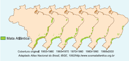 Evolução do processo de degradação da Mata Atlântica.