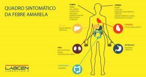 febre amarela sintomas