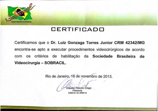 Luiz Gonzaga Torres Junior - Galeria