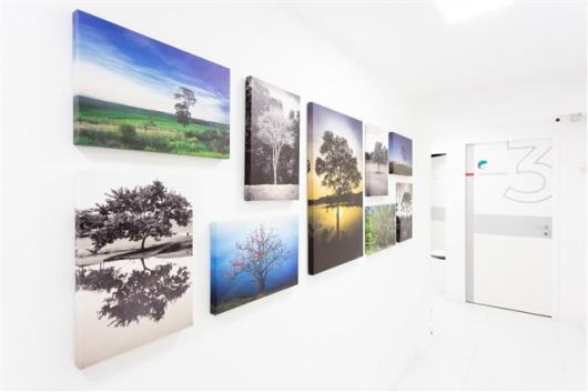 Dr. Guilherme Maia - Galeria de fotos