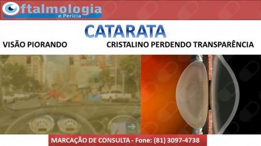 Rilcon Coelho  - Galeria