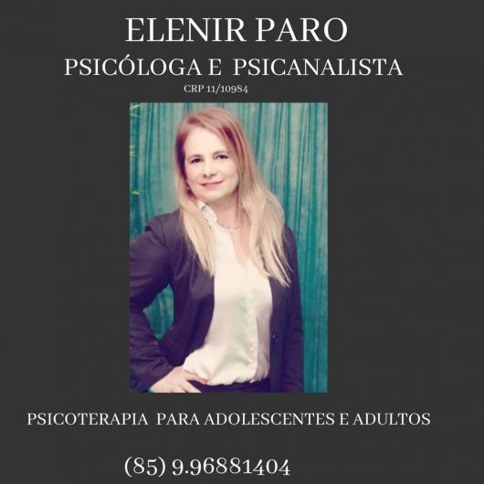 Elenir Paro - Galeria