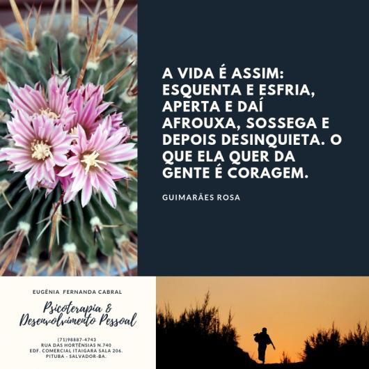 Eugênia Fernanda Cabral  - Galeria
