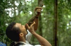 Curso de Sobrevivência na Selva – 36 Horas/Aulas – Preço total: R$130,00