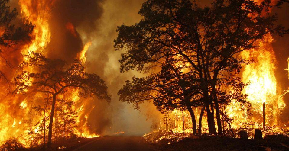 Curso de Prevenção e Combate de Incêndios florestais – 40 Horas/Aulas